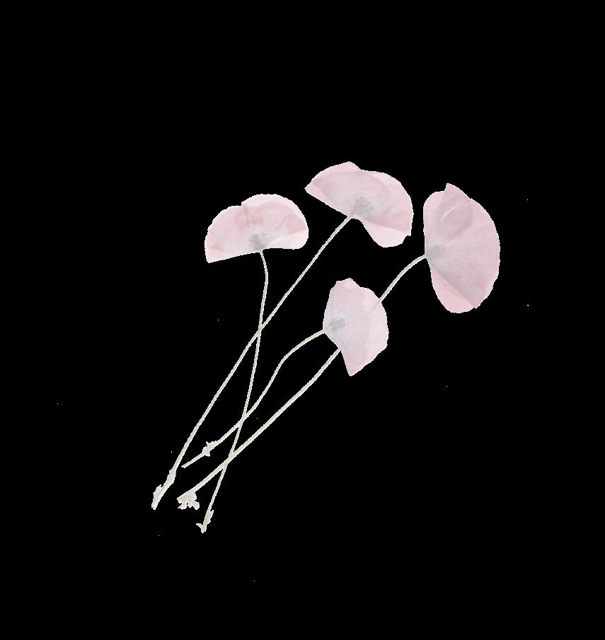 Flower Accent 6